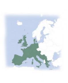Atlas Airway Manual I.F.R. Europe avec classeurs cuir - CEN04