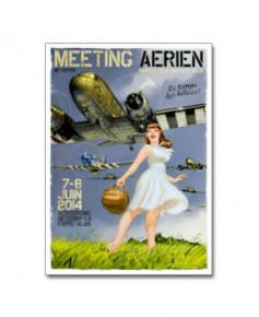 Affiche Meeting La Ferté Alais 2014