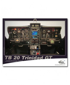 Poster Tableau de bord du TB20