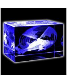Bloc de verre Tigre 50x50x80 mm