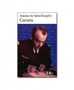 Carnets (Folio)