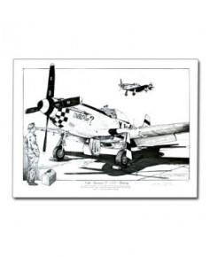Illustration North American Mustang P51D - Extérieur