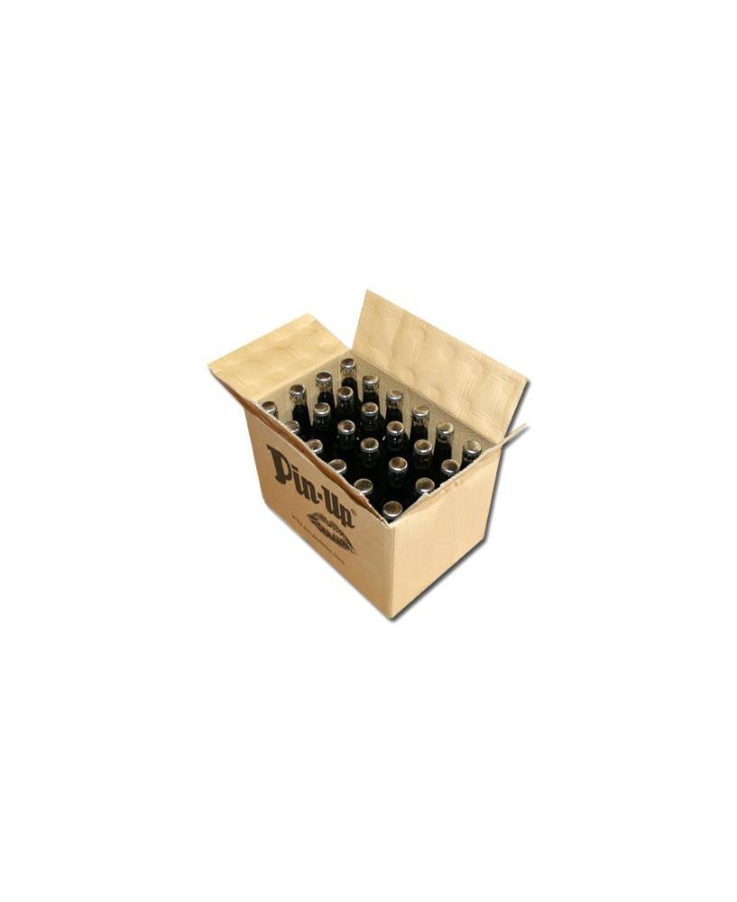 Lot de 24 bouteilles de cola Pin-Up
